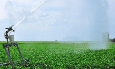 Потребление пресной воды в сельском хозяйстве