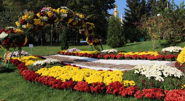 цветы-12