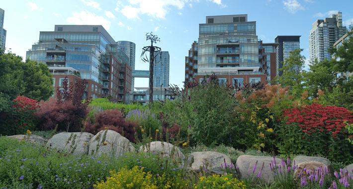 Улицы и парки Торонто